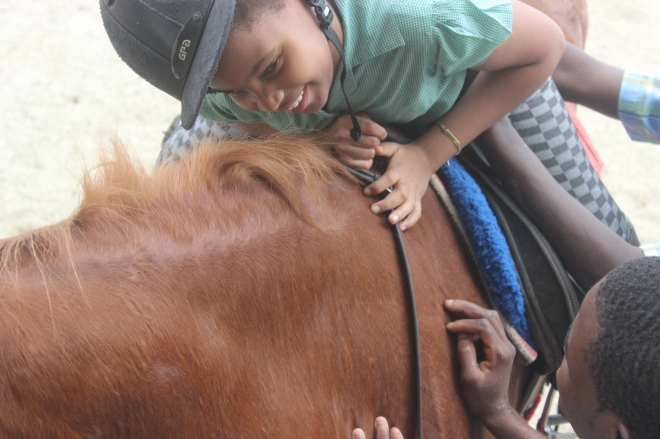 smiles special need horse